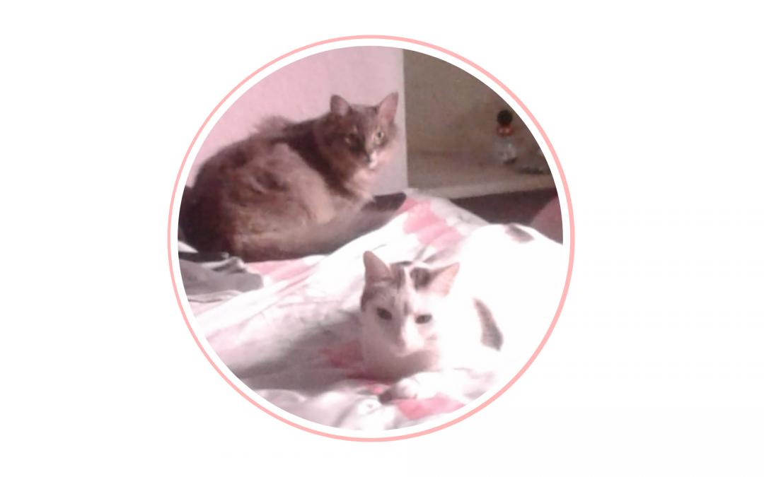 Gregorio y Rufina